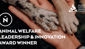 Northern receives award for charitable partnership with Humane Society