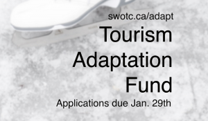 Tourism Adaptation Fund in Ontario's Southwest